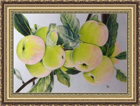 Натюрморт с зелёными яблоками