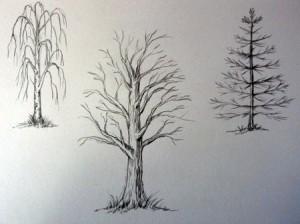 Как нарисовать деревья простым карандашом