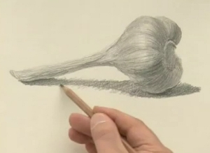 Как нарисовать чеснок