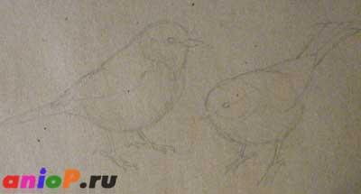 Рисуем синиц на тонированной бумаге для эскизов