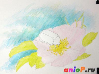 Рисуем жука на цветке шиповника