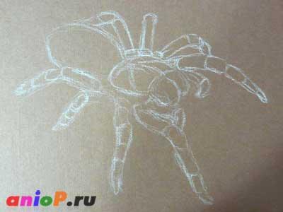набросок паука
