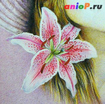 Цветок лилии акварельными карандашами