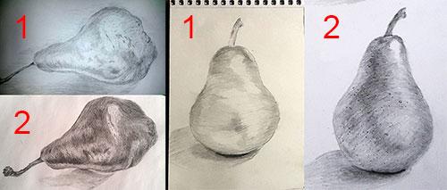 Рисунок груш