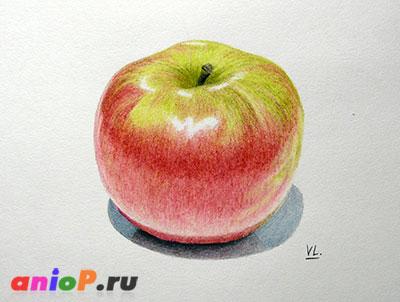 Яблоко цветными карандашами