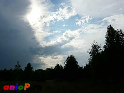 Небо четкое, лес темный