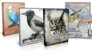 МК птицы