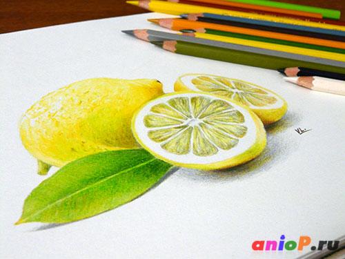 Рисунок лимона карандашами