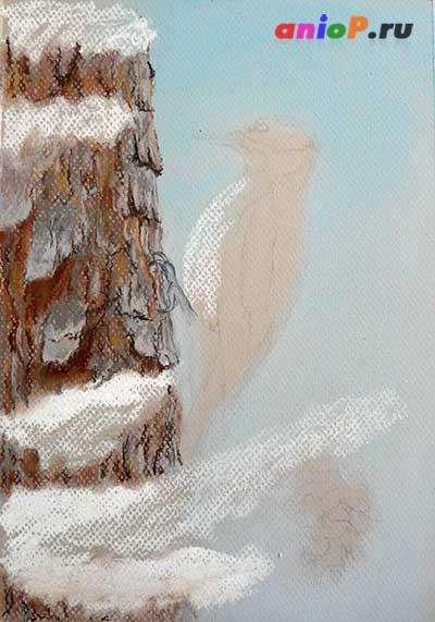 Дятел сухой пастелью