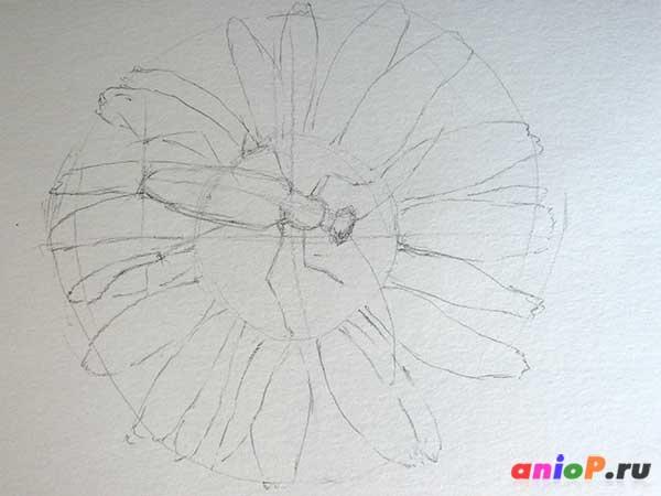 Набросок жука усача простым карандашом