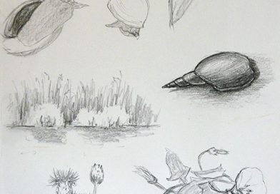 Экскурсия №6 — Рыбалка на Яицких озерах