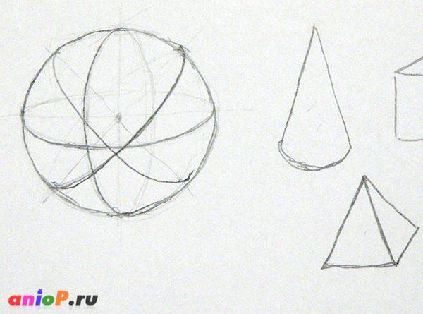 линии сечения