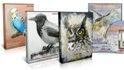 4 мастер-класса птицы