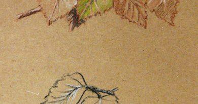 Весенние зарисовки. Выпуск 4 — рисунок листьев березы