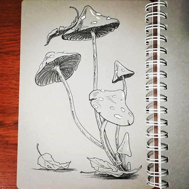 И снова стройные грибочки. #грибы #рисунки #скетч #линер #sketch #drawing