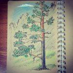 Быстрый скетч с натуры. Скорее бы лето.. #рисунки #скетч #карандаш #линер #пейзаж #sketch #drawing