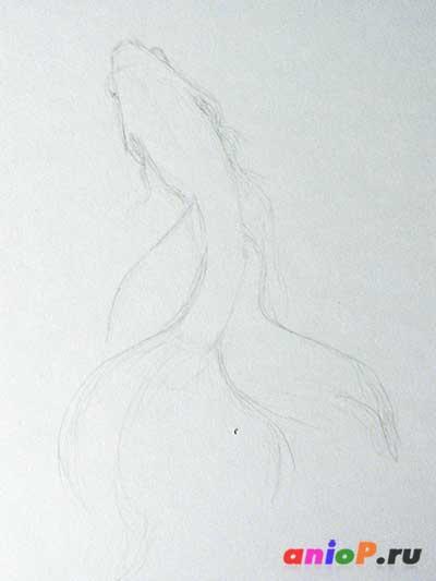 Рыбка петушок набросок