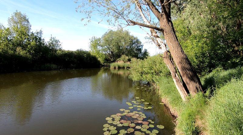 река Чапаевка