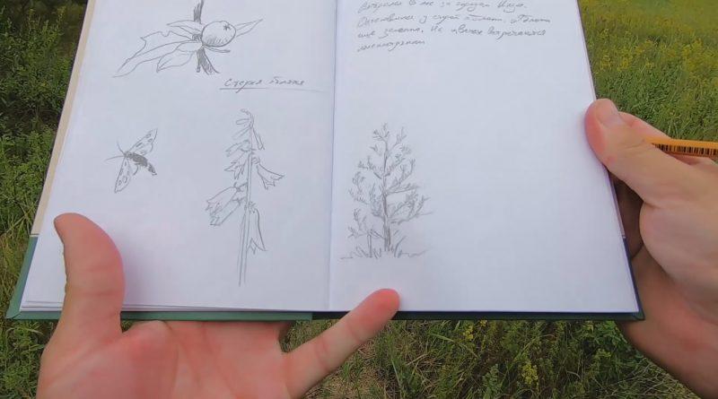 Простой пример ведения полевого дневника или дневника путешественника в скетчбуке