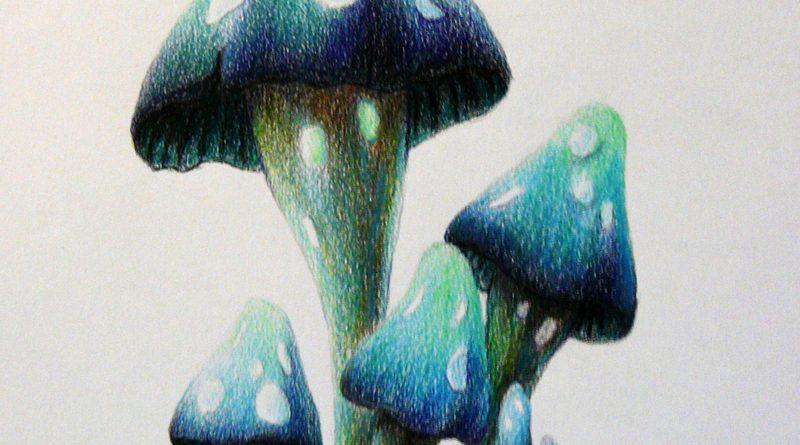 Как нарисовать акварельными карандашами фантастические грибы