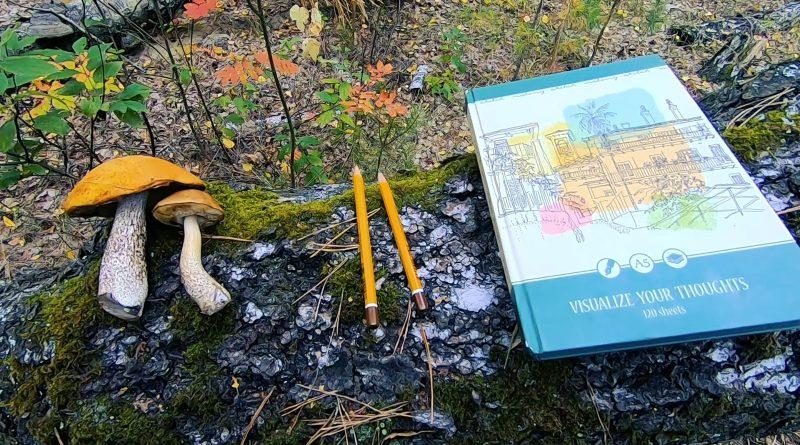 Рисую в скетчбуке с натуры в осеннем лесу