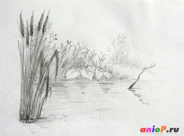рисунок озера с камышами