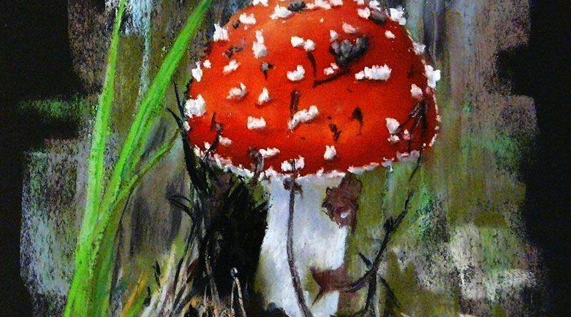 Рисунок мухомора пастелью