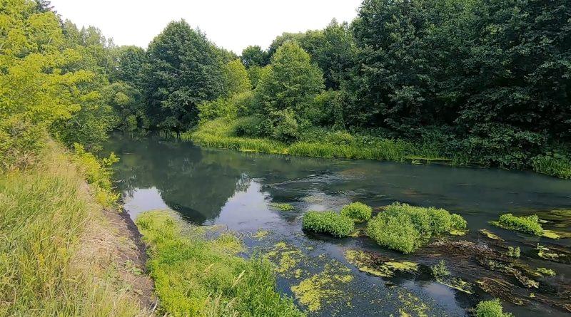 Природа Инзы, река Инза